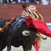 À Nîmes, un père de famille attaque à nouveau une exposition sur la corrida