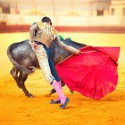 L'appel de 41 personnalités: «La corrida est un art et nul ne doit en être exclu»