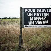 Le cri d'alarme des éleveurs contre les méthodes des antispécistes