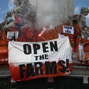 Les tensions entre agriculteurs et animalistes prises très au sérieux par le renseignement