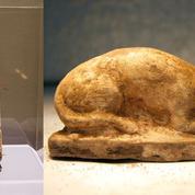 Trois queues et cinq pattes arrières: les mystères de la momie du chat égyptien
