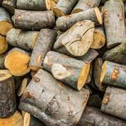 Belgique: le scandale du bois radioactif peut-il s'arrêter à la frontière?