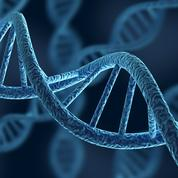 Face au défi du stockage des données, la piste de l'ADN
