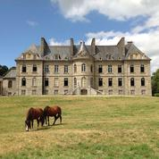 Plus de 1500 châteaux sont à vendre en France