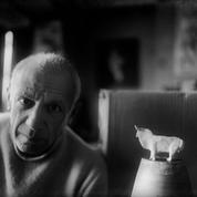 Picasso, dernier jour pour gagner le gros lot