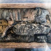 Lionceaux, chats, crocodiles... Des momies d'animaux exhumées en Égypte