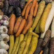 Les Français de plus en plus sensibles au sort des agriculteurs