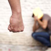 En Isère, un «audit» dans un lycée en proie à la violence
