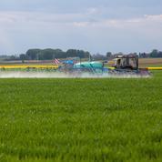 Pesticides: les règles d'épandage précisées à la fin du mois