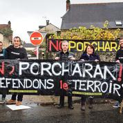 No Porcharan: un village lutte contre un élevage de 6000 porcs