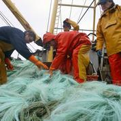 L'Europe fixe les derniers quotas de pêche avant le Brexit