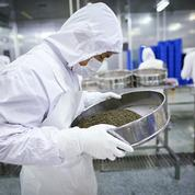 Le caviar chinois à la conquête du monde