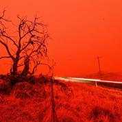 Afrique centrale, Amazonie... L'Australie n'est pas la seule région du globe touchée par des incendies dévastateurs