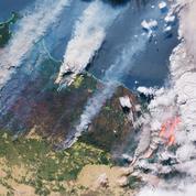 Le réchauffement climatique aggrave les feux de forêt