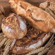 Les artisans boulangers font de la résistance et se professionnalisent