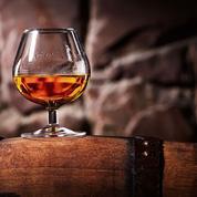 Les expéditions de cognac ont battu des records en 2019