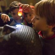 Musées: quand les visiteurs sortent ducadre