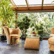 Les plantes d'intérieur rendent-elles plus heureux?