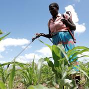 «La protection de l'environnement» justifie des atteintes à la «liberté d'entreprendre», selon le Conseil constitutionnel