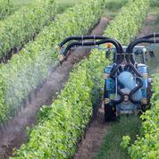 Pesticides: nouvelle contrainte pour les producteurs français