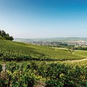 La nouvelle carte des vignobles qui sème la discorde en Bourgogne