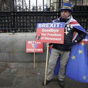 Brexit: la douleur intime et politique des «remainers»