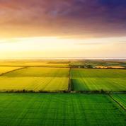 La France n'aura pas 15% de terres agricoles en bio d'ici 2022