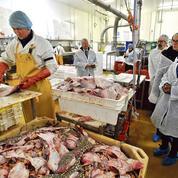 Brexit: Paris tente d'apaiser les pêcheurs normands