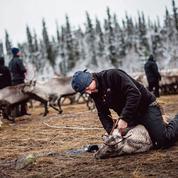 Suède: une victoire historique pour les Samis