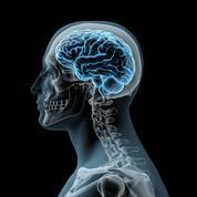 Comment le cerveau tente d'atténuer les souvenirs traumatiques