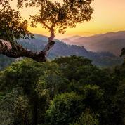 Au nord du Laos, le charme d'une Asie que l'on croyait perdu