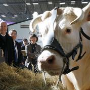 Les Français plébiscitent leurs agriculteurs