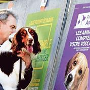 Municipales: comment la cause animale s'est imposée dans le débat