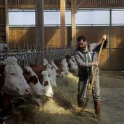 Rodolphe Marconi filme le revers duSalon de l'agriculture