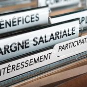 Entreprises : «Il faut simplifier la participation»