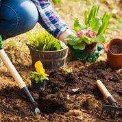 Reprendre le temps d'entretenir son jardin