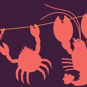 L'incroyable histoire du homard qui sauva sa carapace: on se pince pour y croire!