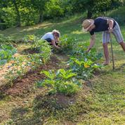 Pratiquer la permaculture à la maison