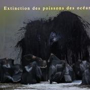 Le Festival d'art lyrique d'Aix-en-Provence tire le rideau sur 2020
