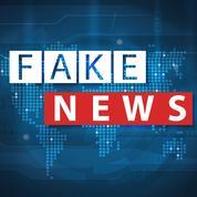 Coronavirus: les armées cherchent une riposte contre les «fake news»