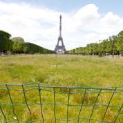 À Paris, la fermeture des parcs fait polémique