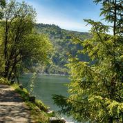Six escapades nature dans le massif des Vosges