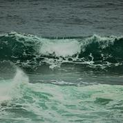 Olivier Babeau - Ce que cette «vague verte» a d'inquiétant