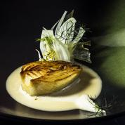 Le fenouil des Alpes par Laurent Petit