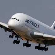 Aéronautique: l'État fixe le cadre de «l'avion vert»