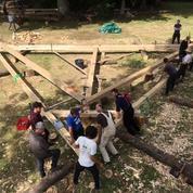 Les charpentiers à l'assaut du chantier de Notre-Dame