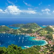 Découvrez les résultats au brevet 2020 de l'académie de Guadeloupe