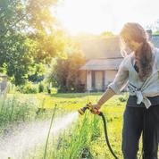 Comment éviter de retrouver ses fleurs et arbustes grillés au retour des vacances?