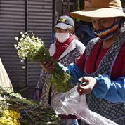 En Bolivie, les indigènes frappés par le Covid-19