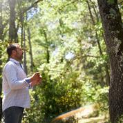 Sylvothérapie: comment j'ai parlé aux arbres
